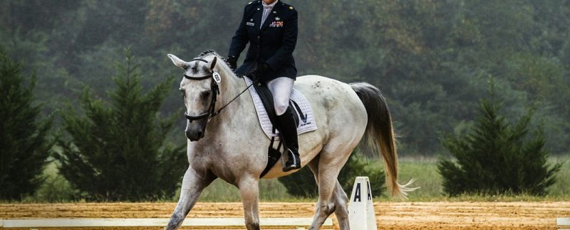horse performing dressage routine